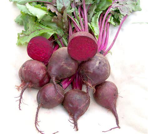 detroit dark red beet