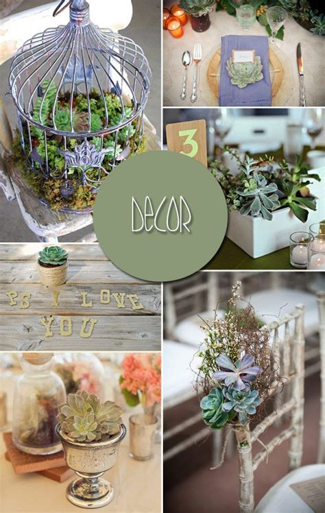 Succulent Wedding Ideas, Alpine plants for Floral Wedding