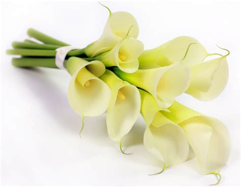 Funeral Flowers Delivery by Funeral Flowers Meaning Funeral Flowers Delivery
