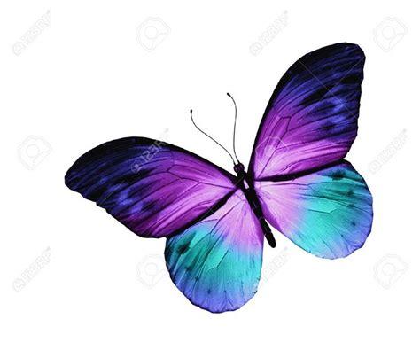 imagenes mariposas libres m 225 s de 25 ideas incre 237 bles sobre tatuaje de mariposa en