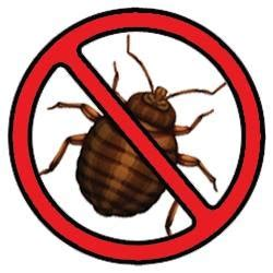 best bed bug exterminator bed bug spray uk how do you get rid of rats in your home bed bug exterminator nyc