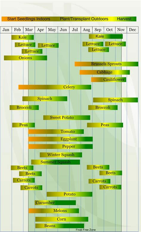 Vegetable Gardening Calendar Zone 8 Vegetable Planting Calendar Describing Approximate
