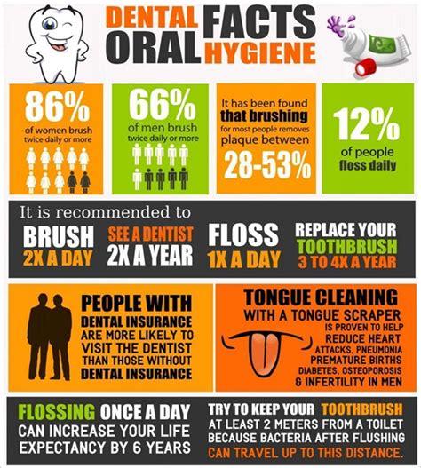 dentists for hanover nh lebanon nh dental facts