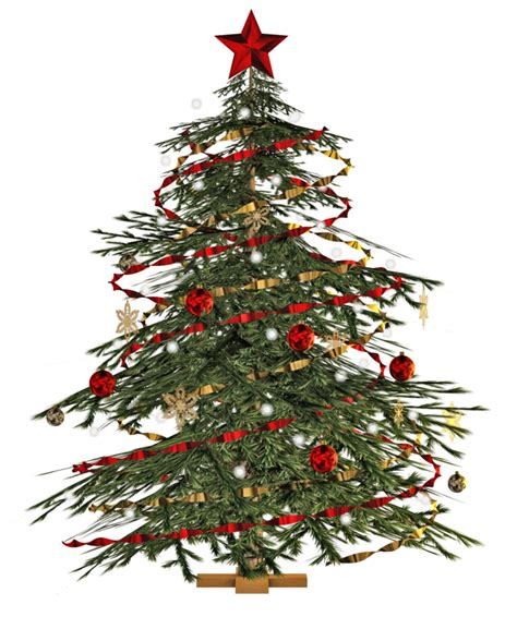 where to buy trees where to buy trees decorations in singapore