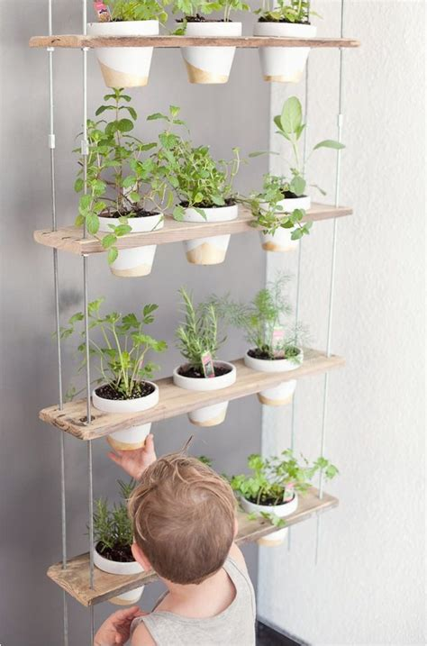 indoor apartment herb garden apartment herb garden kit indoor large size planter ideas herbs diy wall room growing a small