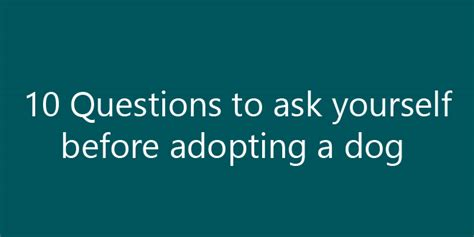 10 Questions To Ask Yourself Before Starting A Business by 10 Questions To Ask Yourself Before Adopting A