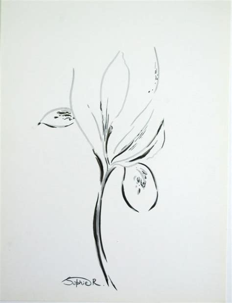 Iris Outline by Iris Flowers Irises And Abstract Drawings On