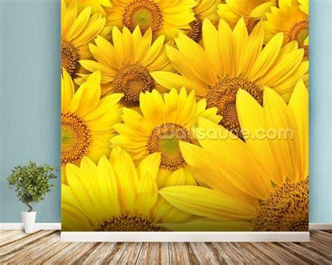Sunflower Wall Murals sunflowers bloom wallpaper wall mural wallsauce