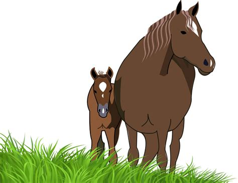 mare clipart mare and foal clipart