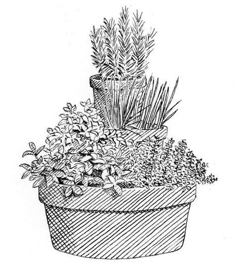 small garden ideas john lewis partners