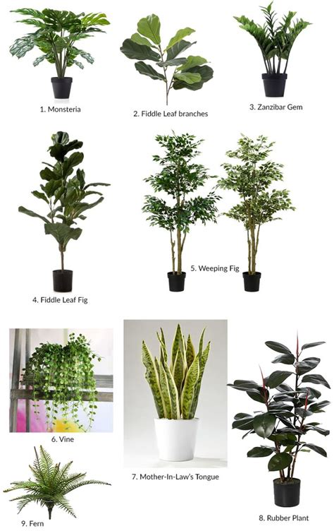 indoor japanese plants best 25 artificial plants ideas on