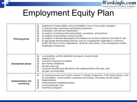equity plan template employment equity sue krantz ppt