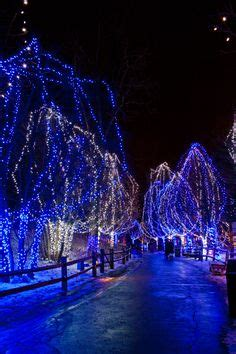 are there christmas lights at the cleveland zoo this year columbus zoo winter lights ohio festivals the o jays and zoos