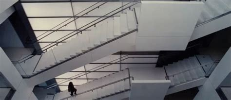 pug stairs gif stairs gifs say more with tenor