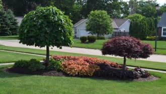 Landscaping Pictures Landscaping Ideas With Photos Pictures Sidewalk Of Rsz Dsc