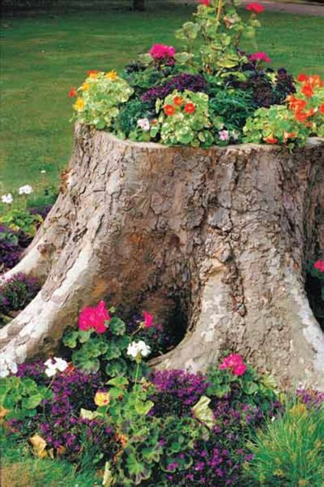 20 Amazing Flower Planters And Lawn Ornaments Made Out Of Tree Stump Planter