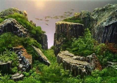 Takashi Amano Aquascaping by How Takashi Amano Takes Nature Photography To New Depths