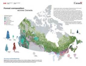 resources map of canada canada s trees logs end