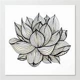 Lotus Flower Black And White Drawing | 550 x 550 jpeg 60kB