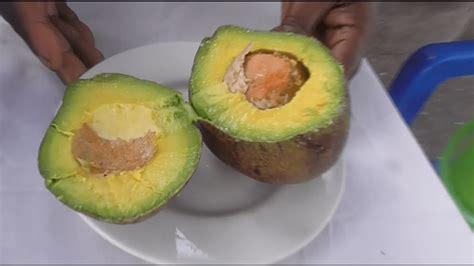 Fresh Avocado Soap all fresh avocado soap by skin passin
