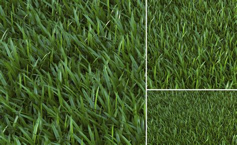 Sketchup Vray Grass Rendering Tutorial | sketchup v ray proxy grass 3d architectural