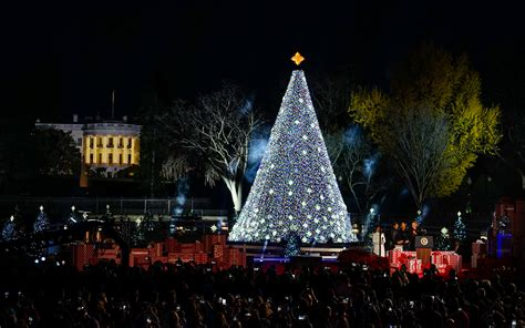 the lighting of the christmas tree decoratingspecial com