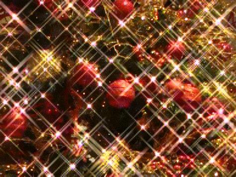 lighting of the banyan tree lahaina now the 11th annual lighting of the banyan tree