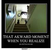Evil Memes  Funny Pictures MEMEYcom