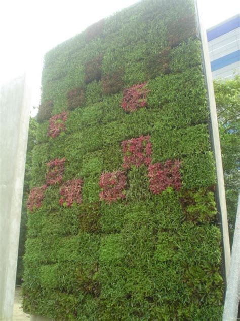 Outdoor Wall Planter by Outdoor Living Wall Planters The Green