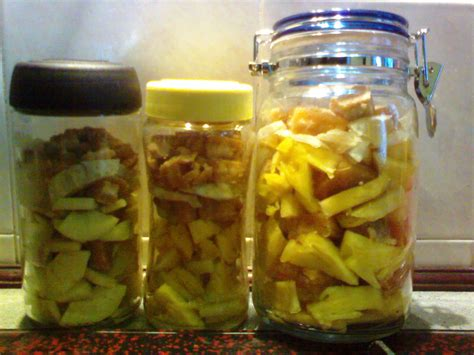 fruit enzyme fruit enzyme diy huichun 我见我思我想