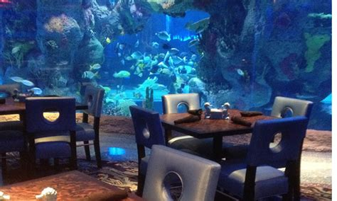 Nashville Home Decor by Aquarium Restaurant Nashville Tn