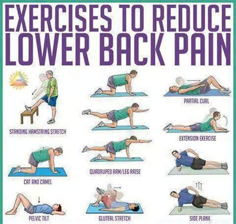 25 best ideas about low back on lower back spasms low back exercises and