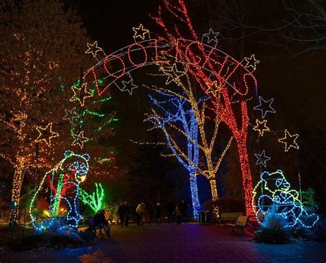 smithsonian national zoo lights up for holiday display
