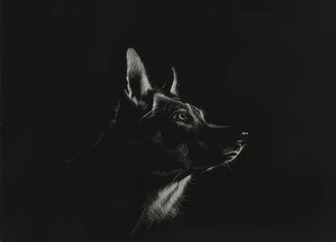 black background painting photo wolves black and white animals painting black