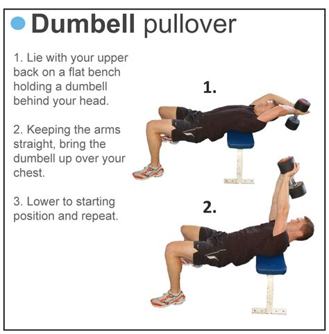 dumbbell exercises without bench bodybuilding best body tips