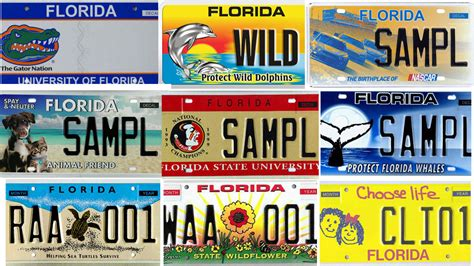Lookup Florida Search Florida S Specialty License Plates Sun Sentinel