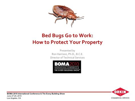 bed bugs at work bed bugs go to work how to protect your property orkin