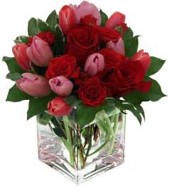 tulips or roses for valentines 17 best ideas about roses for valentines day on