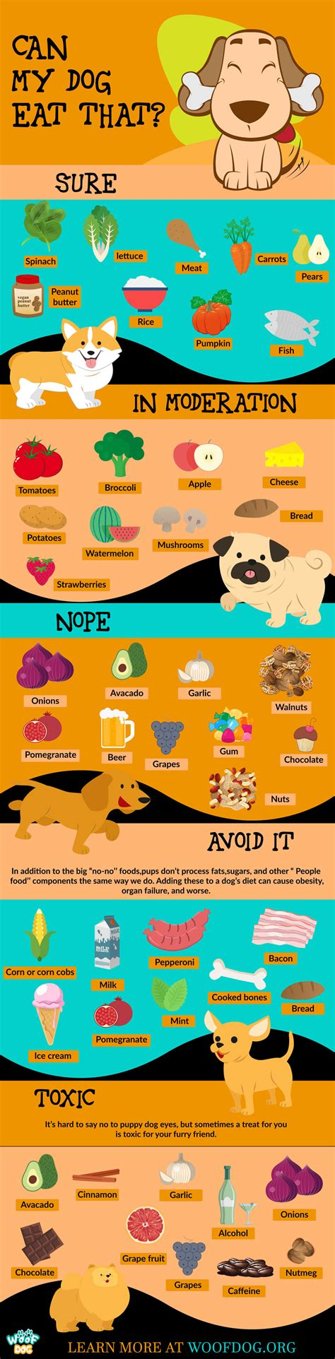 dogs can t eat 30 human foods dogs can and can t eat 11 toxic and dangerous