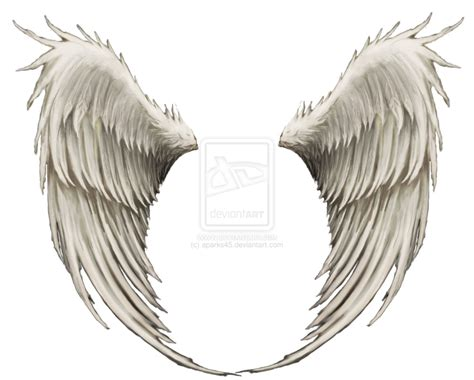 realistic clipart angel wing pencil and in color