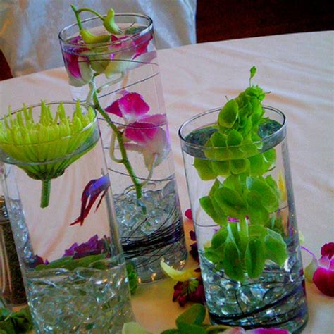 Betta Fish Vase by Betta Fish Flower Vase Fish Not Enough