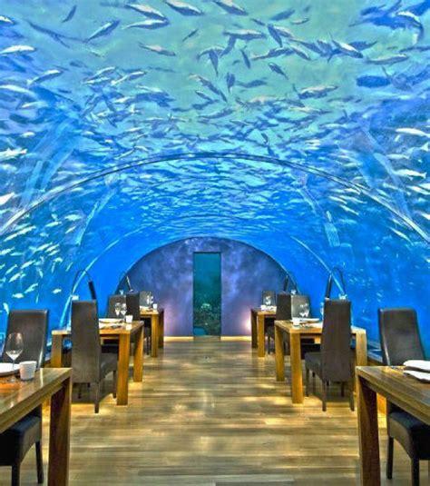 Prisma Blouse By Maldives photo maldives ithaa undersea restaurant