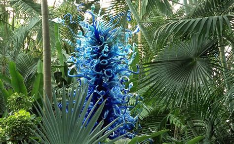 Chihuly Atlanta Botanical Gardens Chihuly In The Garden Atlanta Botanical Garden