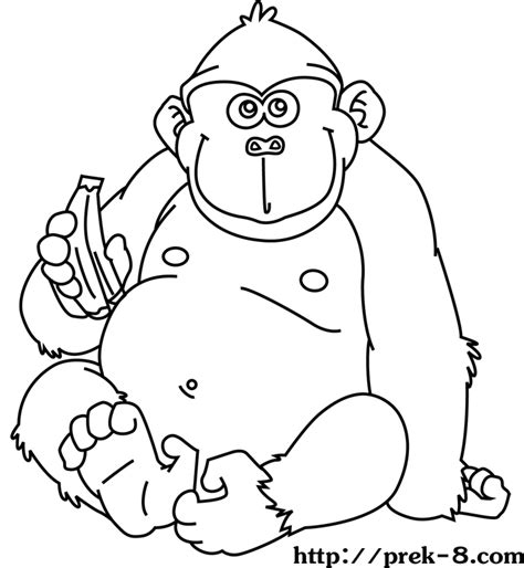 jungle animals coloring pages preschool jungle animal pictures to print az coloring pages