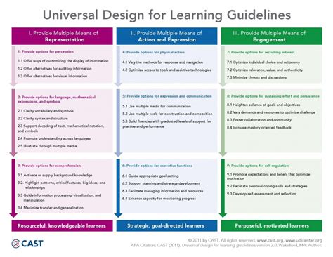 Design For X Guidelines   universal design for learning udl technology enhanced