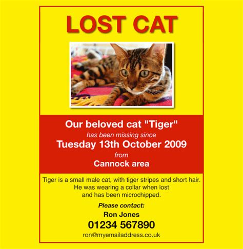 design poster lost cat image gallery lost cat poster template