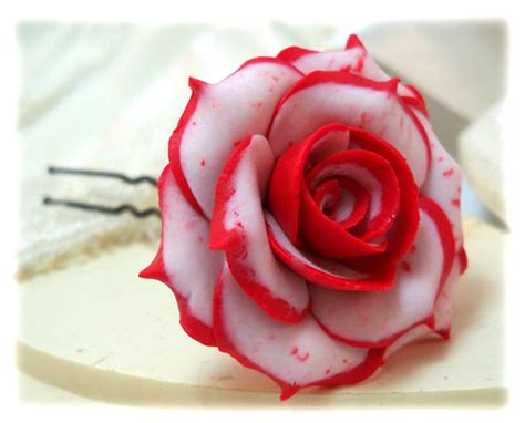 red white and pink roses pictures to pin on pinterest white roses with red tips www pixshark com images