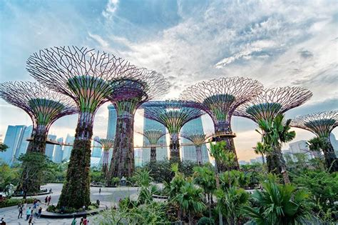 Gardens By The Bay Admission E Ticket singapore gardens by the bay e ticket 愛樂遊