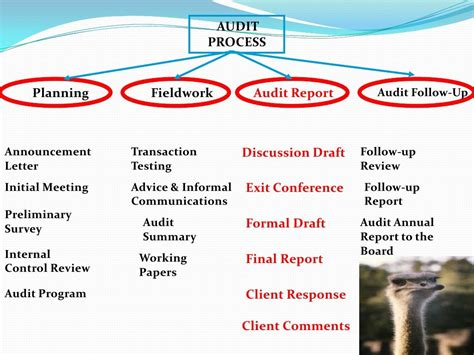audit procedure template slide 2 of 30 of audit process audit procedures audit