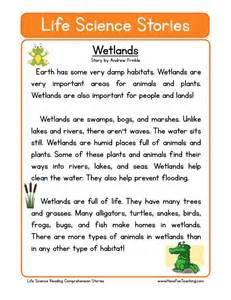 reading comprehension worksheet wetlands